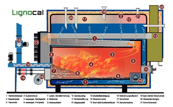 Prozessdampf aus Holzpellets. CO2-neutraler, keimfreier ...