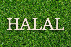 Wood_letter_in_word_halal_on_artificial_green_grass_background