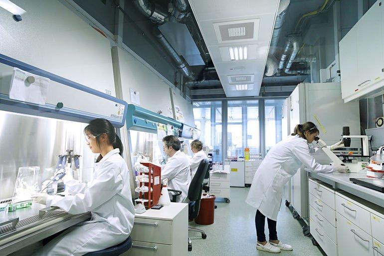 Bayer-Wissenschaftler_in_einem_Labor_der_Division_Pharmaceuticals_in_Berlin__------------------------_Bayer_researchers_in_one_of_Bayer's_cell_culture_laboratories_in_Berlin___